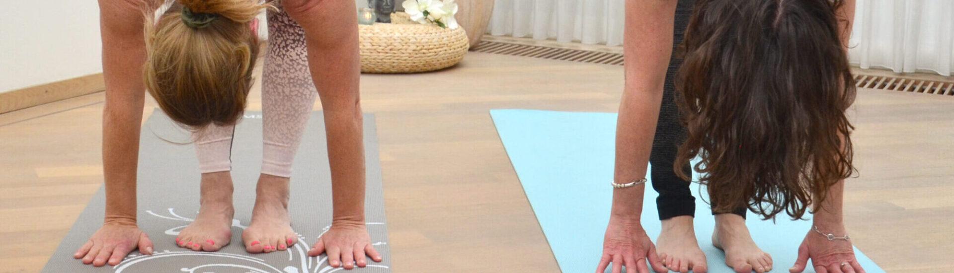 Inner-Fit Yoga danglin DSC_1951